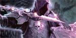 Thunderstone Advance - Verfluchte Höhlen (Pegasus)