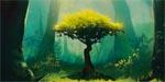 Photosynthese (Blue Orange)
