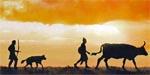 Tribes - Aufbruch der Menschheit (Kosmos)